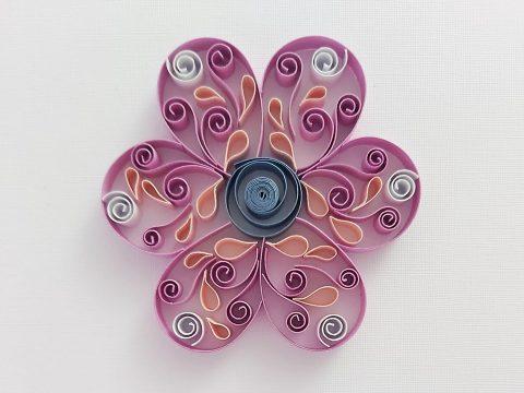 fiore di concetta ciampone